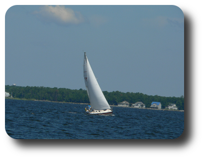 Sailboat on Neuse River, taken by Michele Zulkowski on 25 July at 11:28