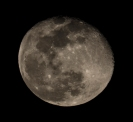Moon rise at 20:44:27. The moon was at 98% Waning Gibbous ISO 400 f/11. 1/160s