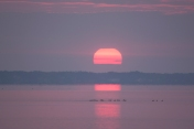 Sunrise on the 10 March at 06:26:20 at Flanner Beach in the Croatan National Forest along the Neuse River ISO 100 f/5.6 1/4s