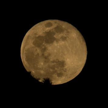 Taken March 31 at 20:22:59 Full Moon