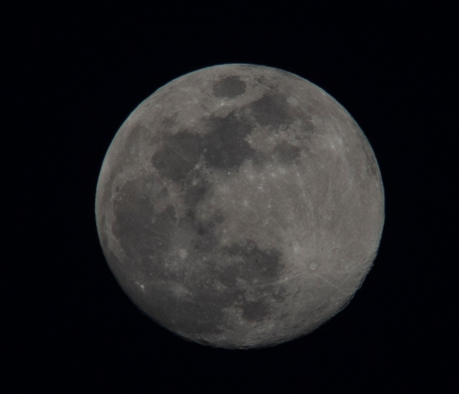 Moon rise on 28th of April at 19:59.55. The moon was at 98% Waxing Gibbous ISO 200 f/8 1/125