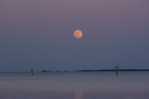Moon Rise at 19:48:57 Full Moon 100% ISOP 800 f/4.8 1/160