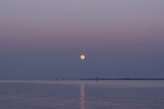 Moon Rise at 19:52.16 Full Moon 100% ISO 640 f/7 1/25