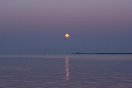 Moon Rise at 19:52.50 Full Moon 100% ISO 500 f/8 1/25