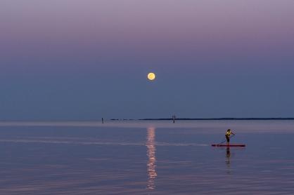 Moon Rise at 19:53:50 Full Moon 100% ISO 500 f/2.5 1/125