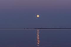 Moon Rise at 19:56:56 Full Moon 100% ISO 500 f/2.5 1/100