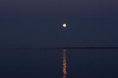 Moon Rise at 19:59:05 Full Moon 100% ISO 500 f/2.5 1/125