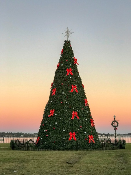 Christmas Tree at Union Park in New Bern