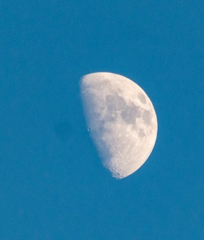 Moonrise at 16:36:11