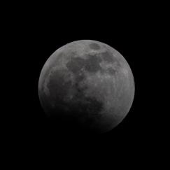 Lunar Eclipse at 22:38:13 Shutter Speed: 1/200 Aperture: f/16 ISO: 200 300mm
