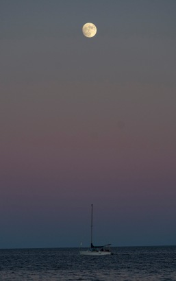Taken at 17:04 on 10 November, Shutter Speed: 1/250. Aperture: f/4.8, ISO: 800