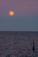 Moonrise over the Neuse River at 17:08 Shutter Speed: 1/200 Aperture: f/5 ISO: 3200
