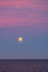 Moonrise over the Neuse River at 17:12 Shutter Speed: 1/80 Aperture: f/4.8 ISO: 1600