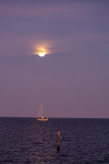 Moonrise over the Neuse River at 17:19 Shutter Speed: 1/30 Aperture: f/4.8 ISO: 3200