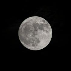 99% Full Moon at 11/11 Shutter Speed: 1/250 Aperture: f/8 ISO: 2350