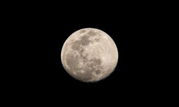 Moon 93% Full on 7 March 2020 at 18:25 Shutter Speed: 1/100 Aperture: f/8 ISO: 62 Focal Length: 300 Nikon D7500 - Nikon DX AF-S NIkkor 55-300mm | 4.5-5.6 G