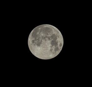 Full Moon (100% full) Taken on: May 7 at 05:16 Shutter Speed: 1/200 Aperture: f/11 ISO: 200 Focal Length: 300