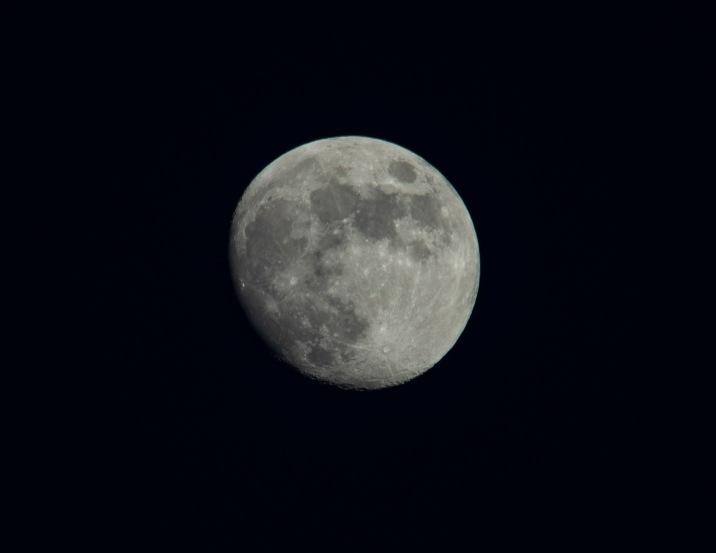 Taken on 2nd July at 20:35 Shutter Speed: 1/40 sec Aperture: f/8 ISO: 50 Focal Length: 300mm