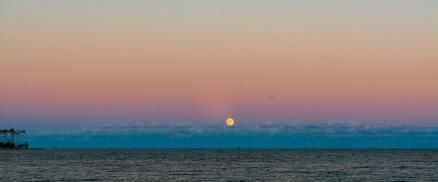 Moonrise taken at 18:10 in Oriental, NC Shutter Speed: 1/50 Aperture: f/9 ISO: 125 Focal Length: 50mm