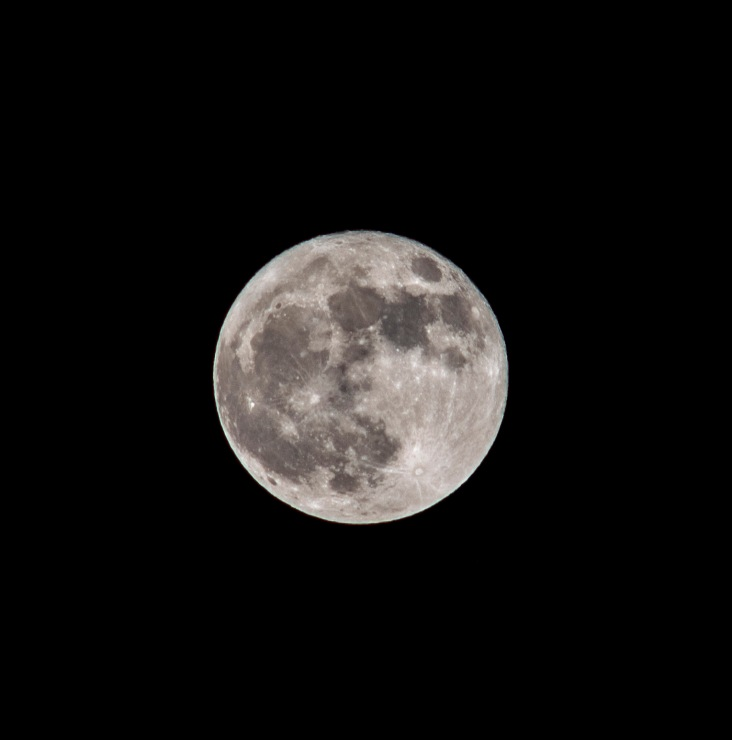Blue Moon (Full) taken at 20:14 in New Bern Shutter Speed: 1/100 Aperture: f/8 ISO: 50 Focal Length: 300mm