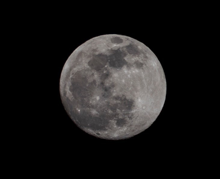 Taken at 19:07 Shutter Speed: 1/500 Aperture: f/8 ISO: 125 Focal Length: 300mm